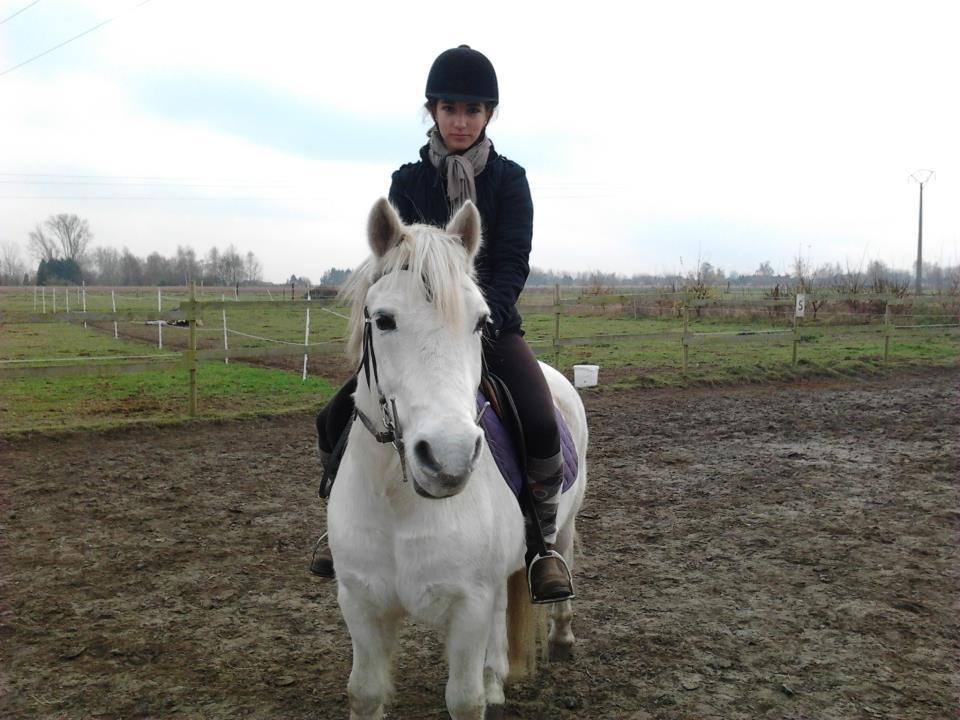 Novembre 2012 - Hergnies (59)