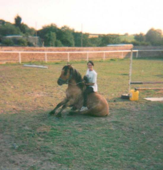 Gribouille du Futoy (ONCP) - Eté 1998