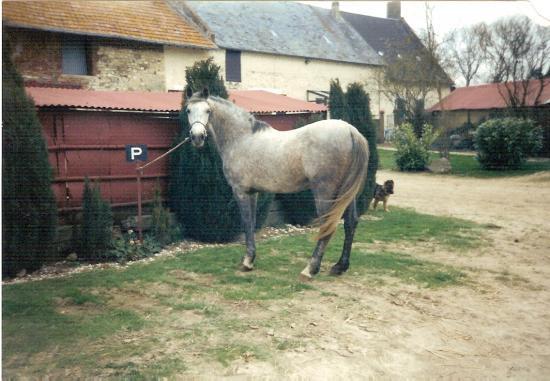 Etoile du Futoy (ONCP) - Hiver 1999