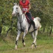 Kouros Cathare (Arabe)